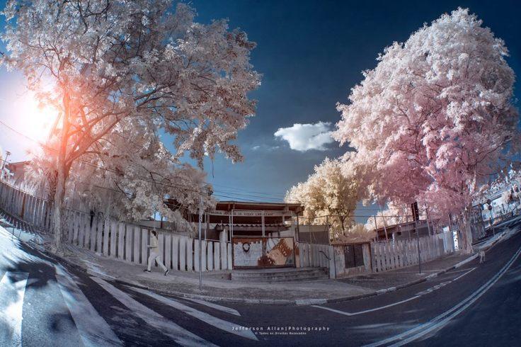fotos infravermelho